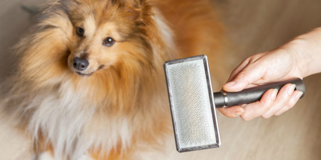 8 Insanely Simple Tips To Banish Pet Fur