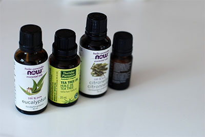 Essential Oils can help your dogs