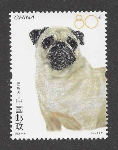 Pugs originated in China